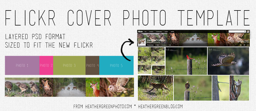 hg-flickrcovertemplate-preview